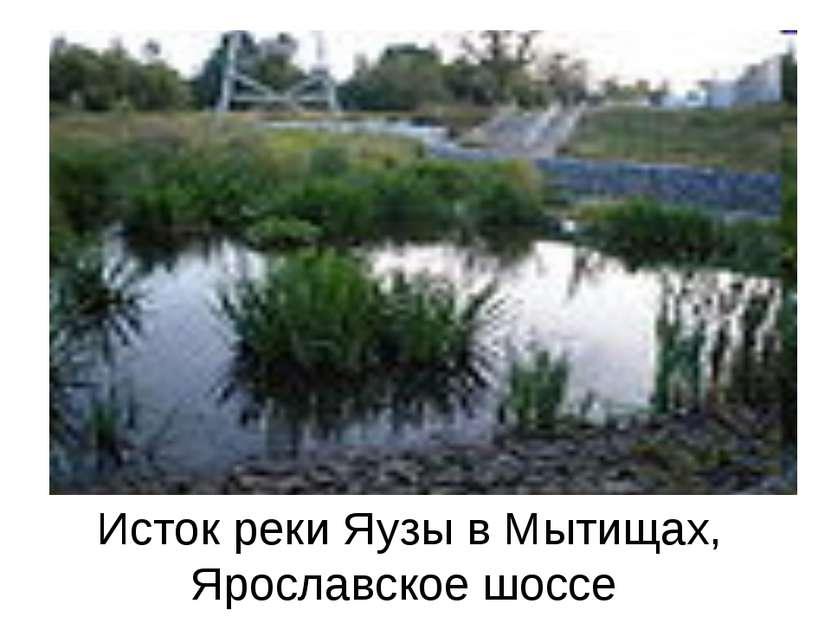 Исток реки Яузы в Мытищах, Ярославское шоссе