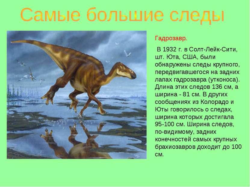 Гадрозавр. В 1932 г. в Солт-Лейк-Сити, шт. Юта, США, были обнаружены следы кр...