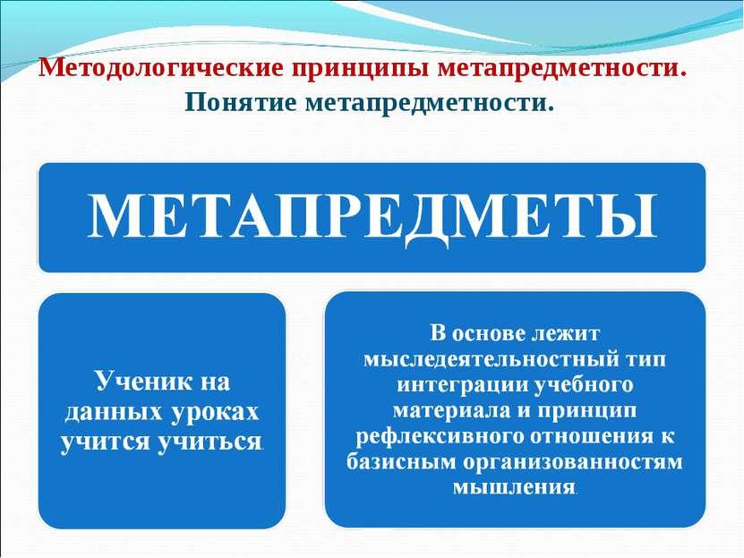 Методологические принципы метапредметности. Понятие метапредметности.