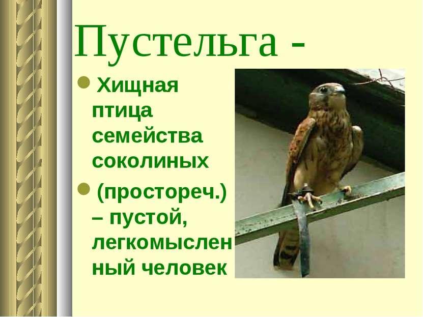 Пустельга - Хищная птица семейства соколиных (простореч.) – пустой, легкомысл...