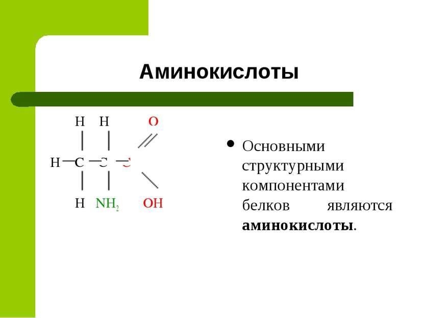 Аминокислоты H H O H C C C H NH2 OH Основными структурными компонентами белко...