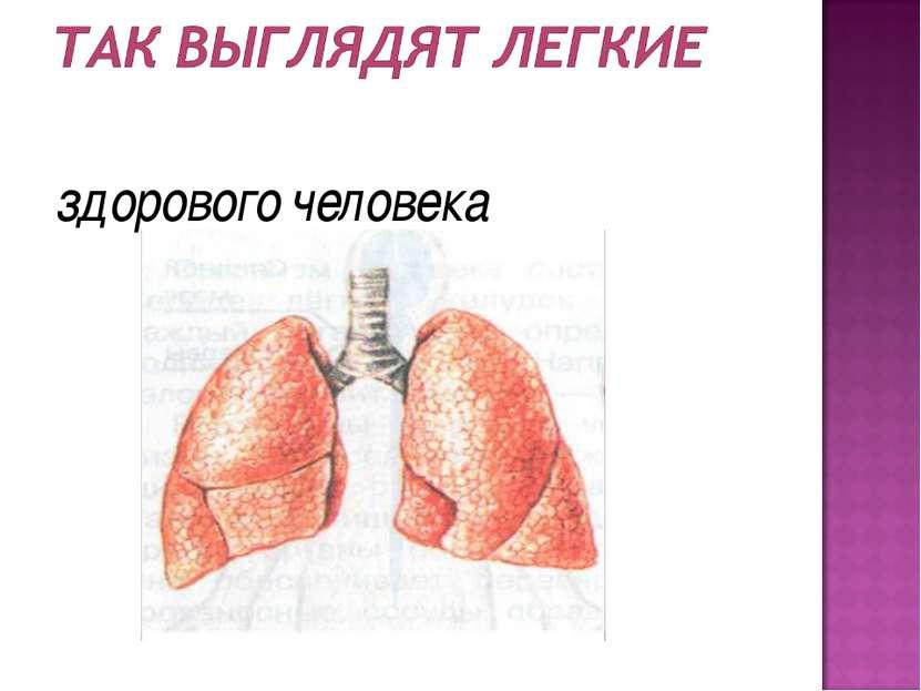 здорового человека