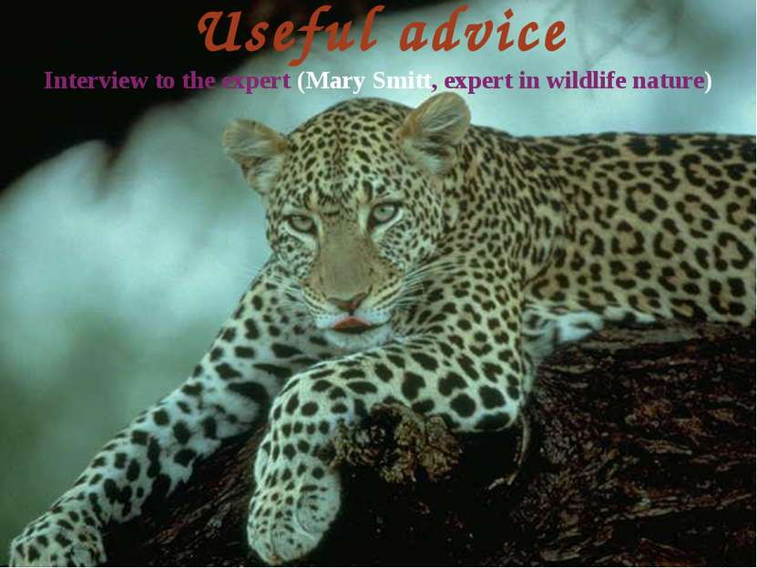 Useful advice Interview to the expert (Mary Smitt, expert in wildlife nature)