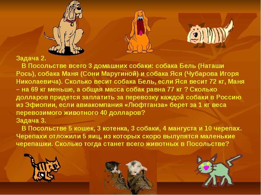Задача 2. В Посольстве всего 3 домашних собаки: собака Бель (Наташи Рось), со...