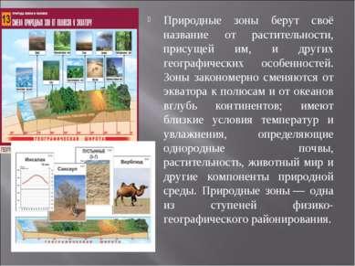 Природные зоны берут своё название от растительности, присущей им, и других г...