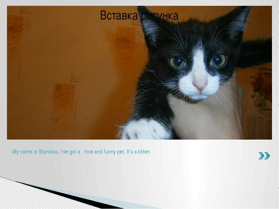 My name is Stanislav. I've got a nice and funny pet. It's a kitten.