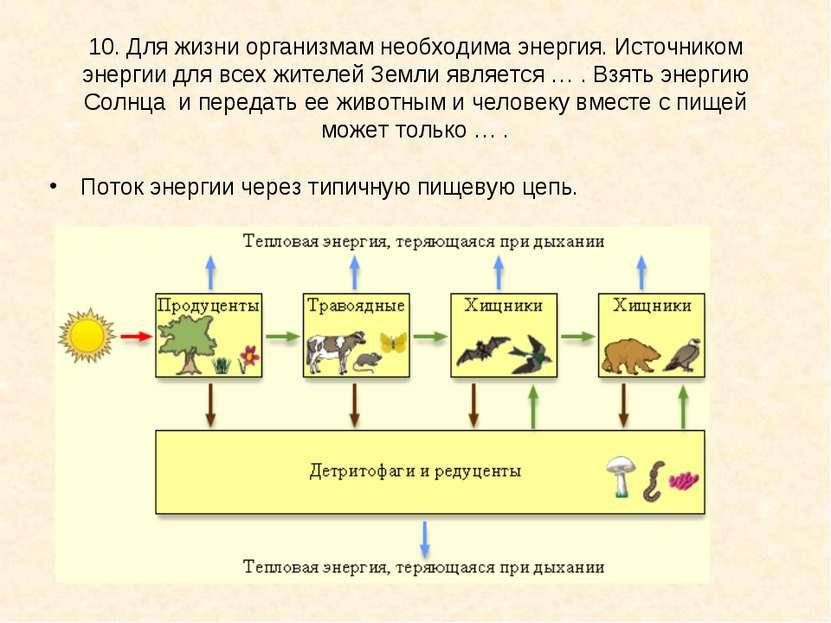 10. Для жизни организмам необходима энергия. Источником энергии для всех жите...