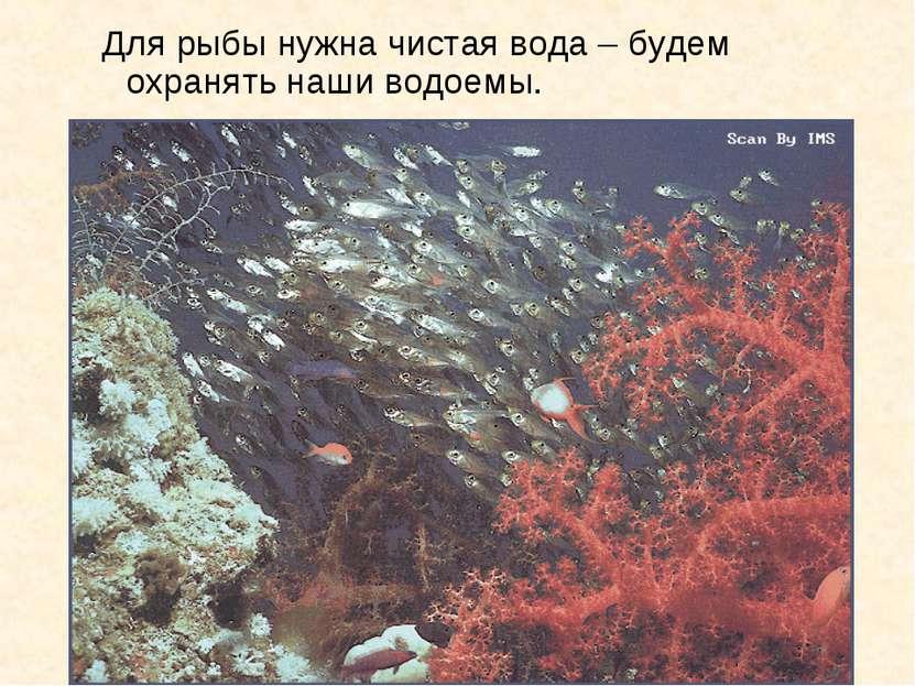 Для рыбы нужна чистая вода – будем охранять наши водоемы.