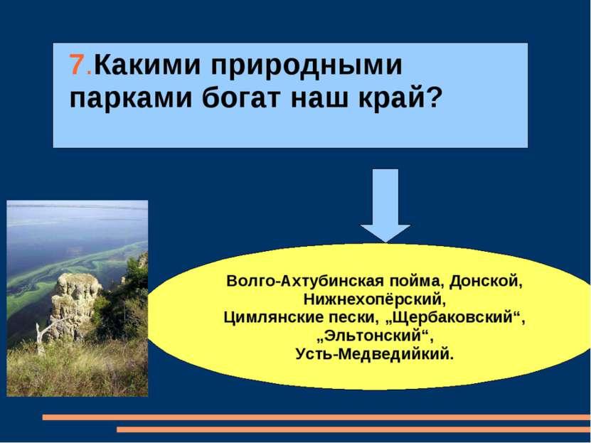 7.Какими природными парками богат наш край? Волго-Ахтубинская пойма, Донской,...