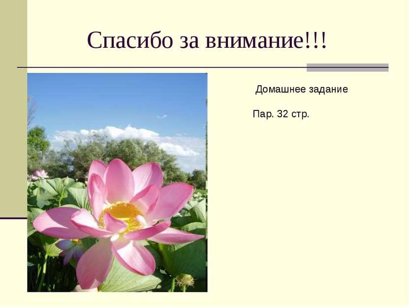 Спасибо за внимание!!! Домашнее задание Пар. 32 стр.