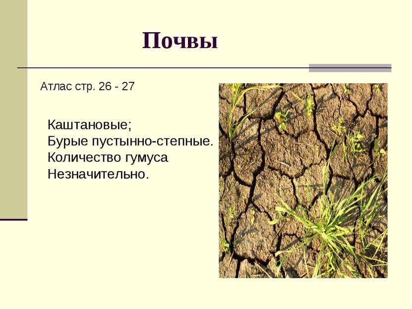 Почвы Атлас стр. 26 - 27 Каштановые; Бурые пустынно-степные. Количество гумус...