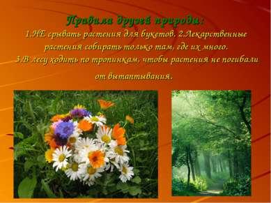Правила друзей природы: 1.НЕ срывать растения для букетов. 2.Лекарственные ра...
