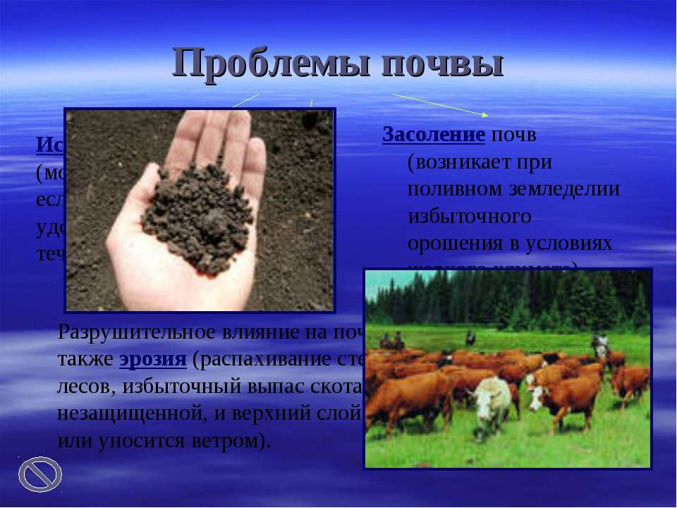 Проблемы почвы Засоление почв (возникает при поливном земледелии избыточного ...
