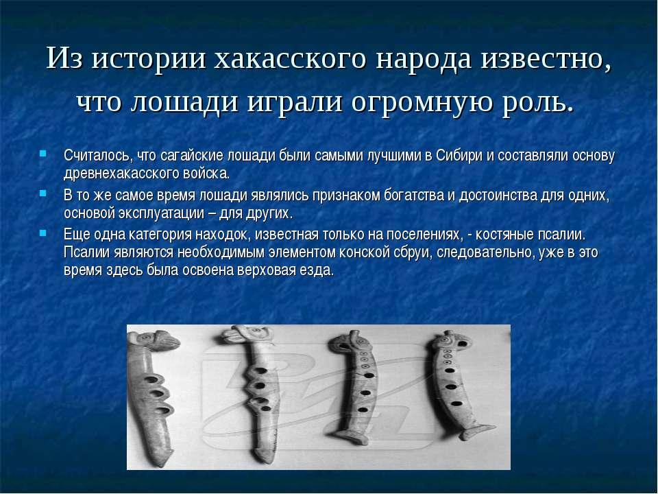 Из истории хакасского народа известно, что лошади играли огромную роль. Счита...