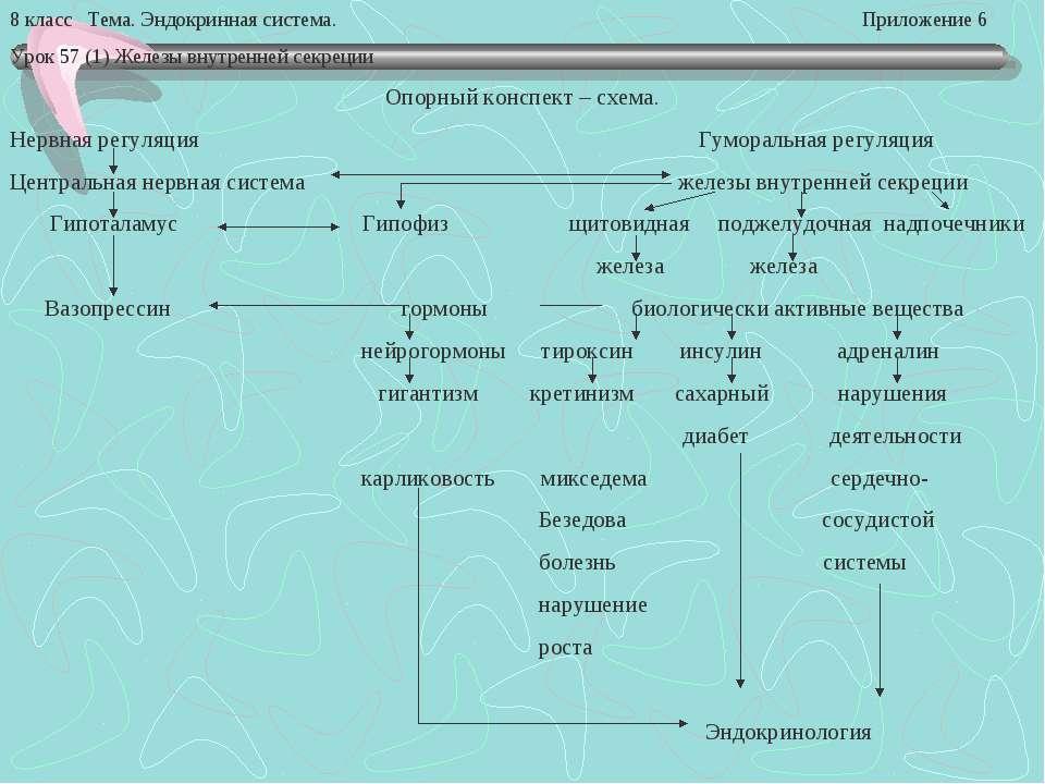 8 класс Тема. Эндокринная система. Приложение 6 Урок 57 (1) Железы внутренней...