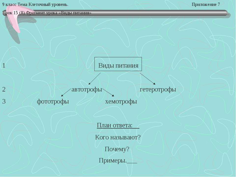 9 класс Тема Клеточный уровень. Приложение 7 Урок 15 (8) Фрагмент урока «Виды...