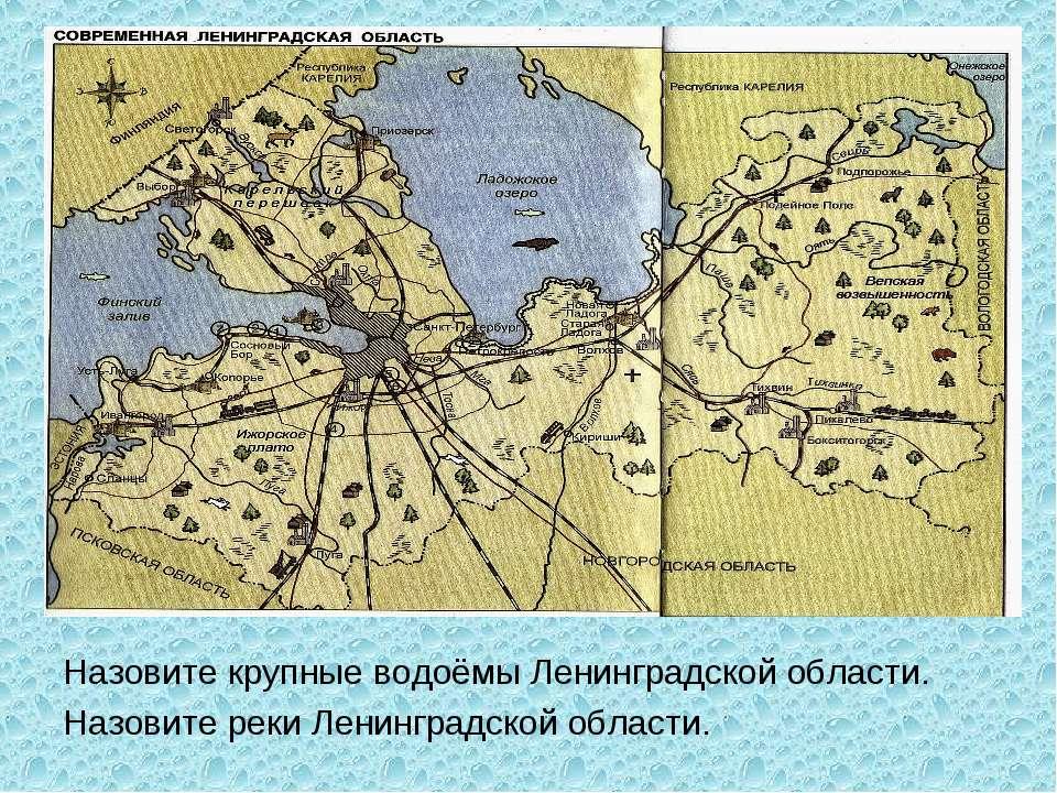 Назовите крупные водоёмы Ленинградской области. Назовите реки Ленинградской о...