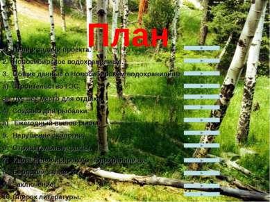 План Цели и задачи проекта. Новосибирское водохранилище. Общие данные о Новос...