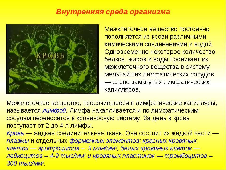 Внутренняя среда организма Межклеточное вещество, просочившееся в лимфатическ...