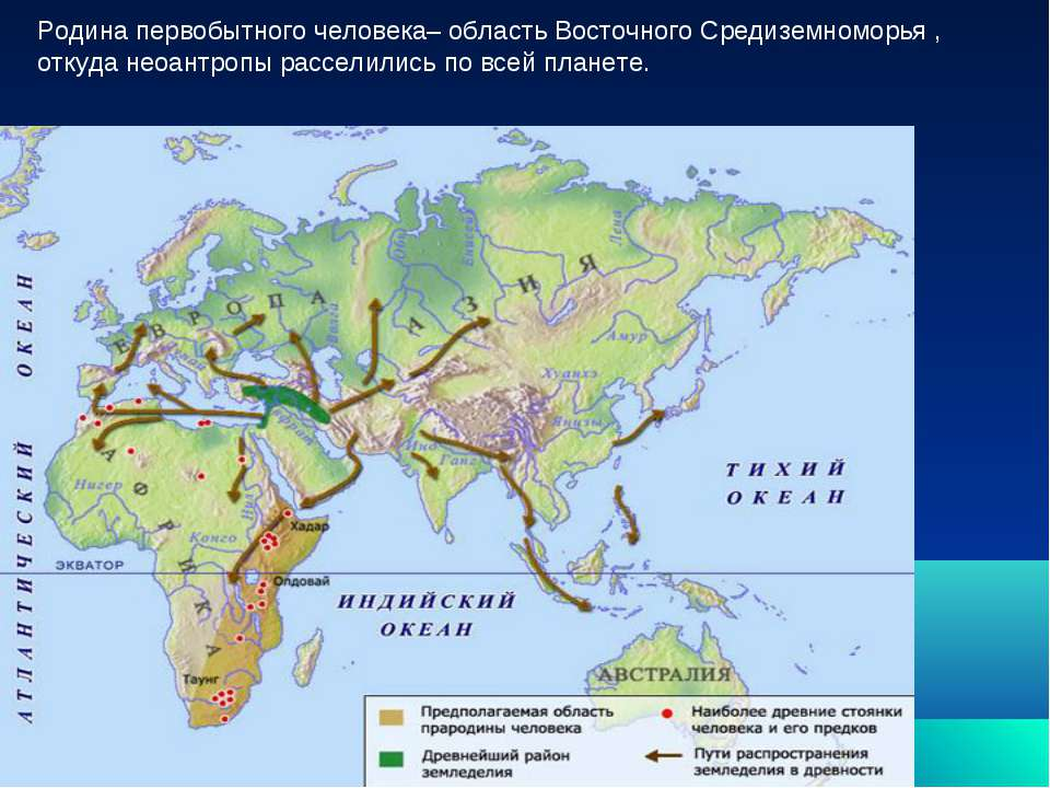 Родина первобытного человека– область Восточного Средиземноморья , откуда нео...