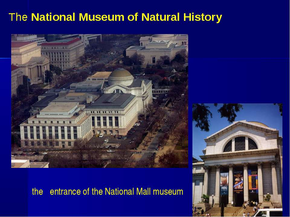 The National Museum of Natural History the entrance of the National Mall museum