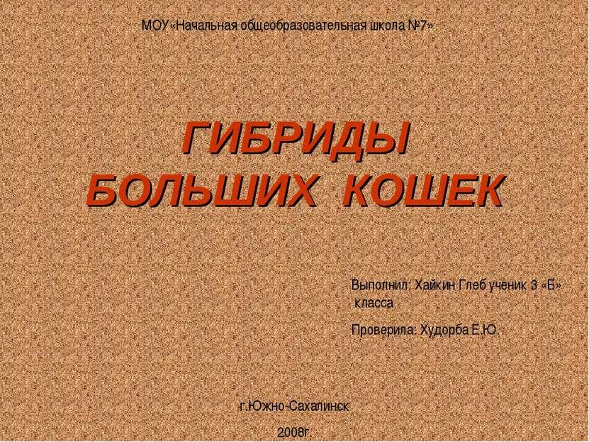 МОУ«Начальная общеобразовательная школа №7» г.Южно-Сахалинск 2008г. Выполнил:...
