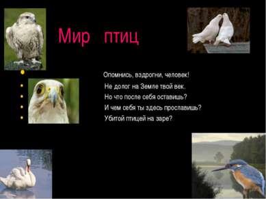 Мир птиц Опомнись, вздрогни, человек! Не долог на Земле твой век. Но что посл...