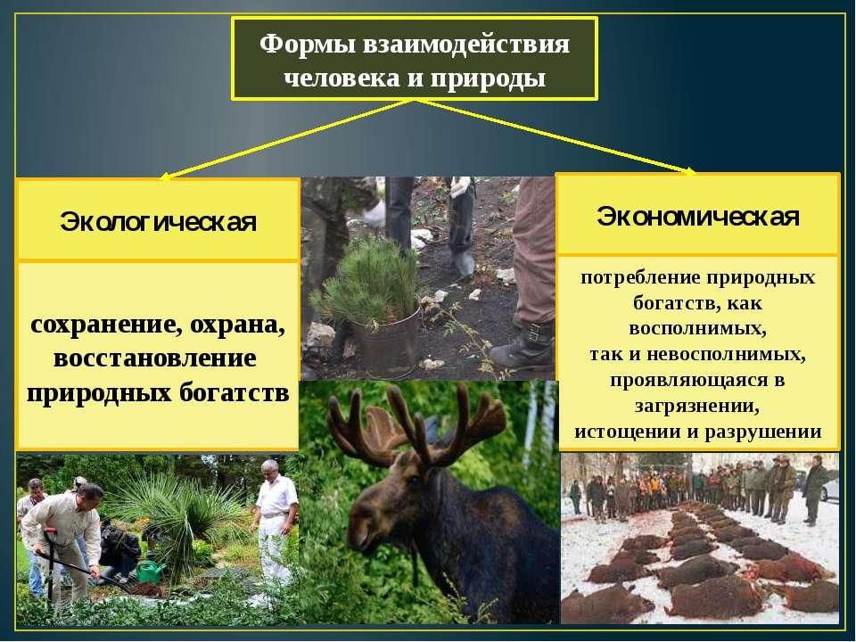 Формы взаимодействия человека и природы Экологическая Экономическая сохранени...