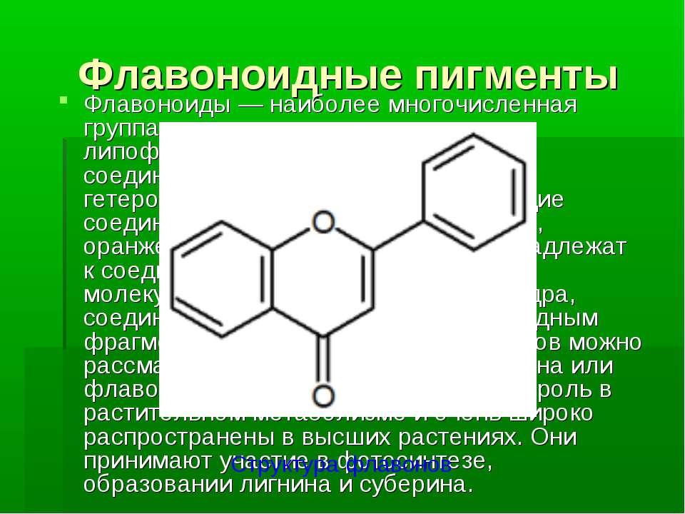 Флавоноидные пигменты Флавоноиды — наиболее многочисленная группа как водорас...