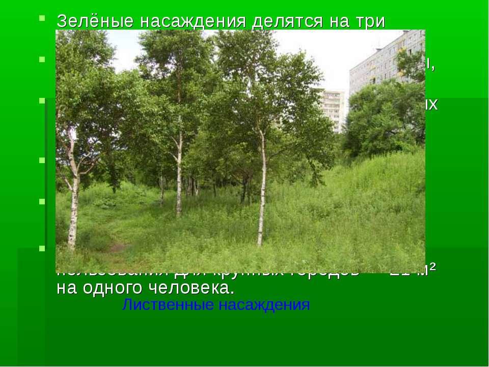 Зелёные насаждения делятся на три основные категории: общего пользования (сад...