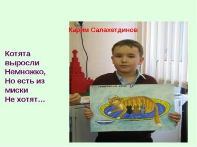 Карим Салахетдинов Котята выросли Немножко, Но есть из миски Не хотят…