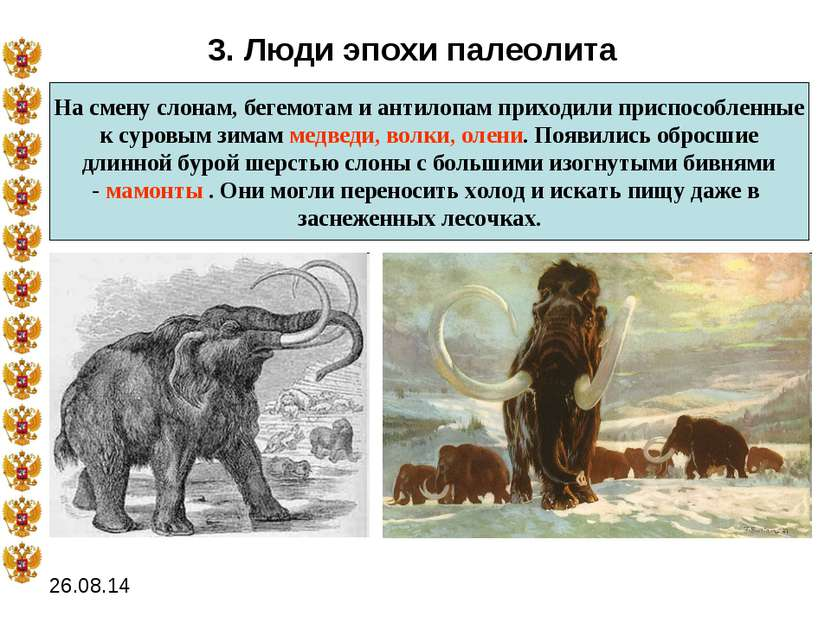 3. Люди эпохи палеолита На смену слонам, бегемотам и антилопам приходили прис...