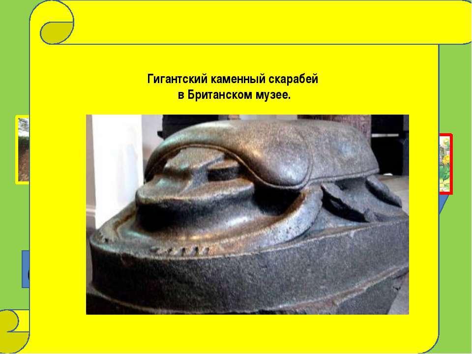 старт ? ? Это надо знать фотография Дмитрия Тельнова Гигантский каменный скар...