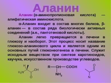 Аланин(α-аминопропионовая кислота) — алифатическая аминокислота. α-Аланин вх...