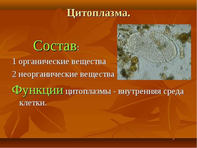 Цитоплазма. Состав: 1 органические вещества 2 неорганические вещества Функции...