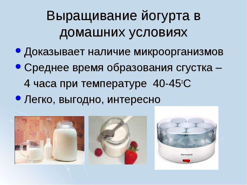 Выращивание йогурта в домашних условиях Доказывает наличие микроорганизмов Ср...