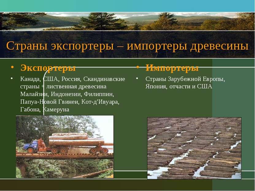 Страны экспортеры – импортеры древесины Экспортеры Канада, США, Россия, Сканд...