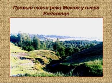 Правый склон реки Мокша у озера Ендовище