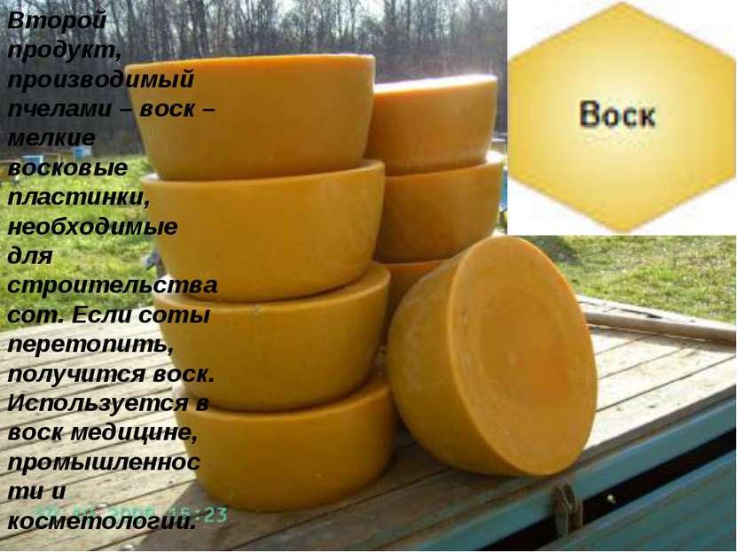 Второй продукт, производимый пчелами – воск – мелкие восковые пластинки, необ...