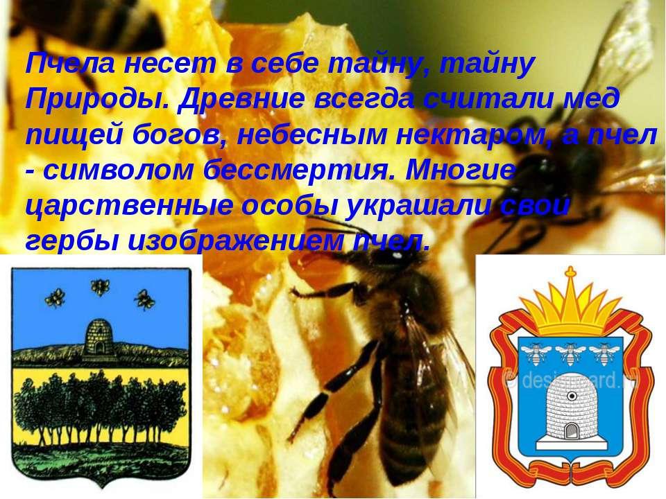 Пчела несет в себе тайну, тайну Природы. Древние всегда считали мед пищей бог...