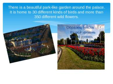 There is a beautiful park-like garden around the palace. It is home to 30 dif...