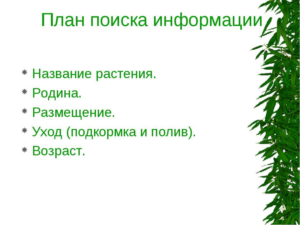 План поиска информации Название растения. Родина. Размещение. Уход (подкормка...