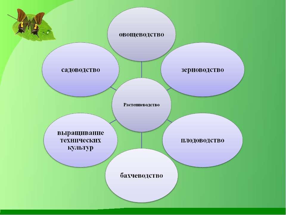Схема взаимосвязи учебных предметов по экономическому образованию и воспитанию школьников