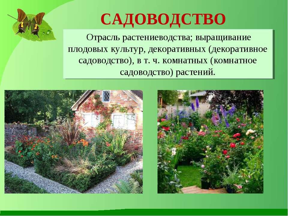 презентация урок окр мир 3 класс растениеводство