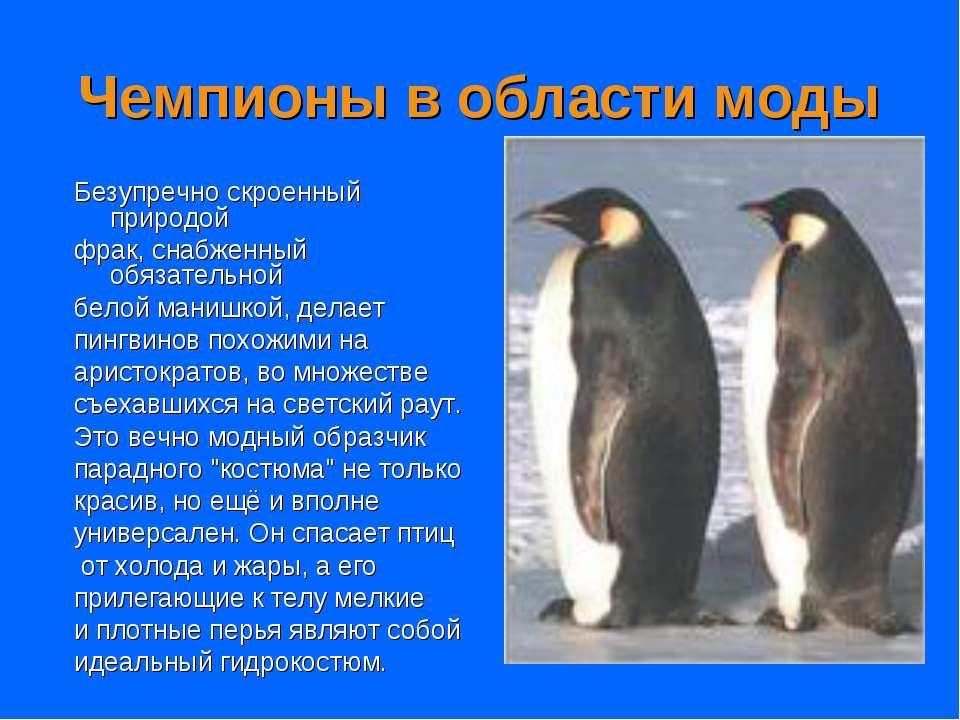 Чемпионы в области моды Безупречно скроенный природой фрак, снабженный обязат...