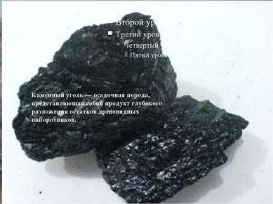 Бачатский угольный разрез Угленосные отложения Бачатского разреза включают 22...