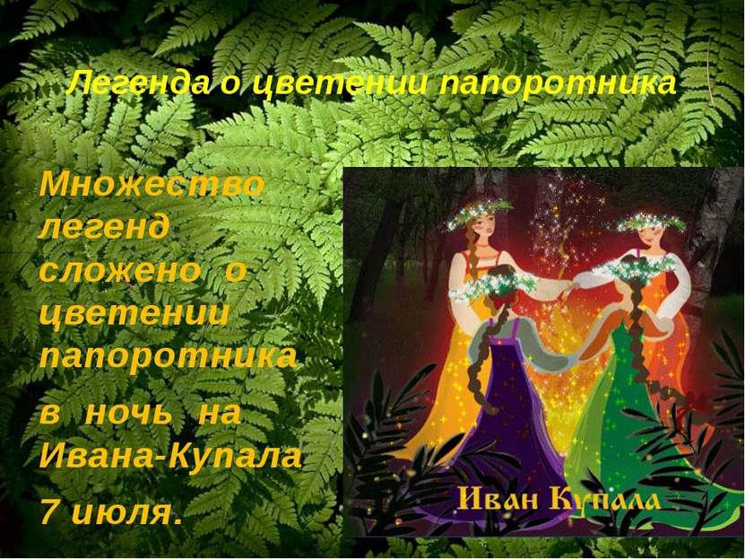 Легенда о цветении папоротника Множество легенд сложено о цветении папоротник...