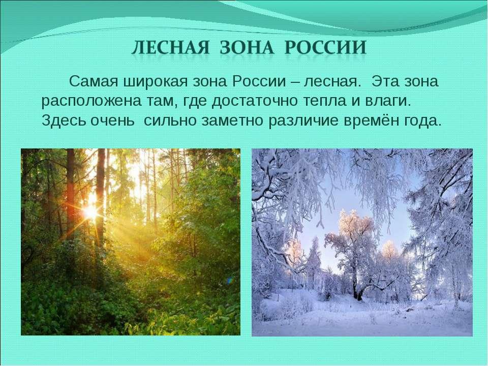 Самая широкая зона России – лесная. Эта зона расположена там, где достаточно ...