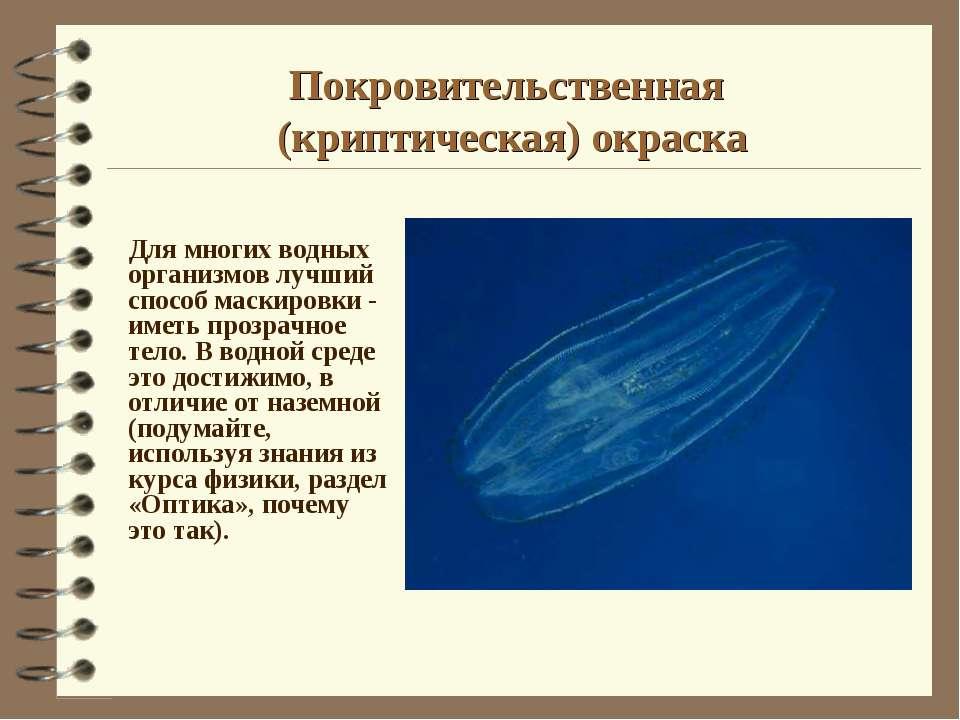 Покровительственная (криптическая) окраска Для многих водных организмов лучши...