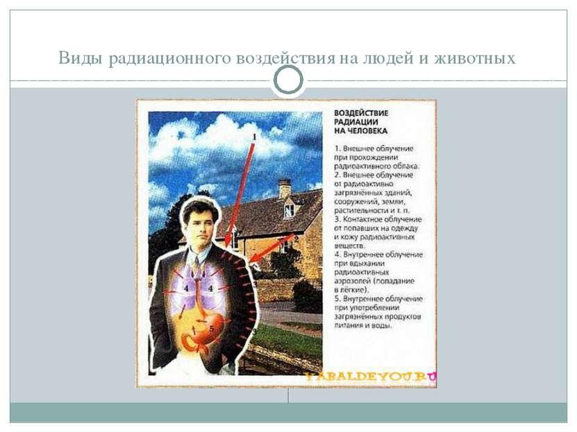 Виды радиационного воздействия на людей и животных